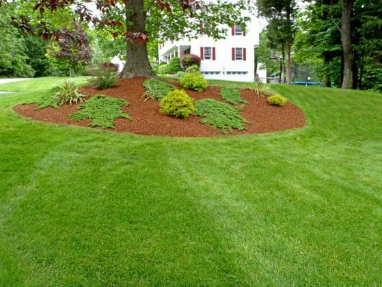 A large property that receives lawn and landscape maintenance services from Heroes.